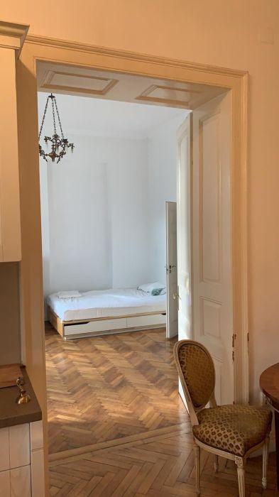 Dau in chirie apartament 4 camere, 4 bai, centru Cluj