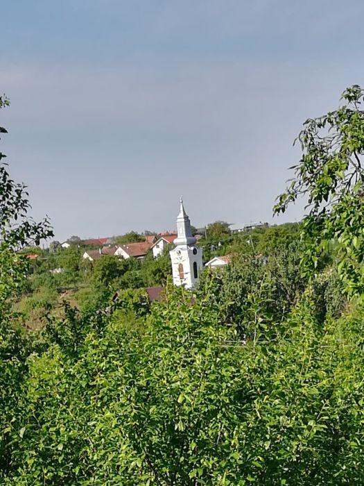 Teren de Vanzare - Cornesti
