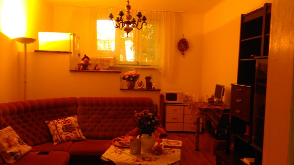 Apartament de inchiriat zona Balcescu/Apartment for rent Balcescu area