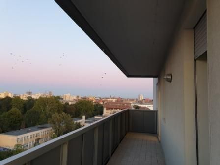 Apartment 3 rooms - for rent near the Victor Babes University of Medic