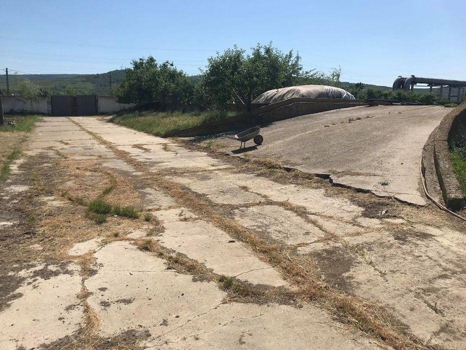 Inchiriez platforma betonata iasi