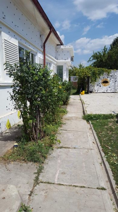 Se inchiriaza in zona copou Sararie casa cu gradina