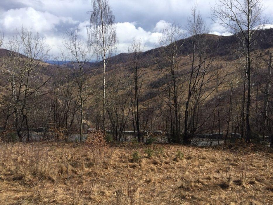 Teren Stațiunea Muntele Baisorii-Pensiune sau Casa de Vacanța cu C.U